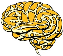 small mindboggle logo